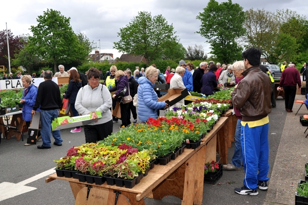 Plant Sale in full swing