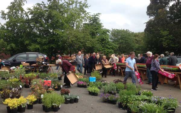 plant-sale-may-417