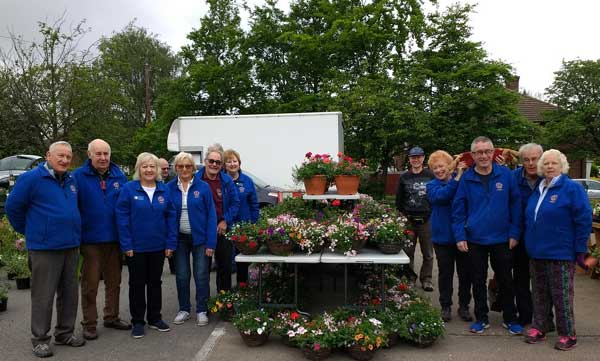 lions-plant-sale-lg-may-19